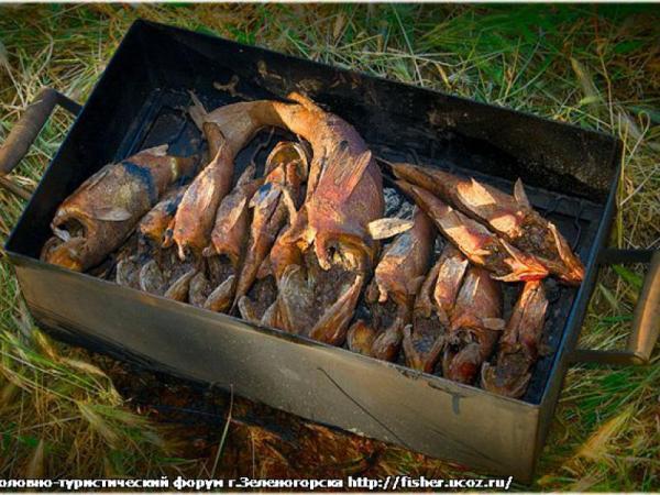 Как в домашних условиях в коптильне закоптить рыбу
