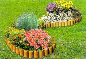 Схема посадки цветов на клумбе изучаем особенности